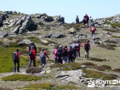 Senderismo Segovia - Macizo de la Buitrera; senderismo madrid sierra norte